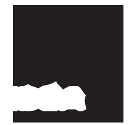 VGUARD Big Idea 2019