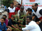 tree plantation drive @ Bhubaneswar
