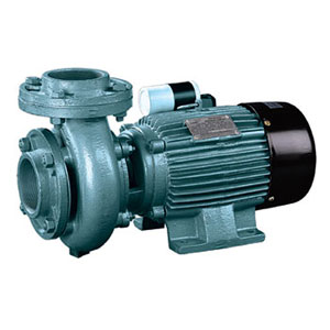 Centrifugal Pumps with Extended Shaft