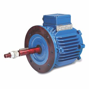 Three Phase Motors (Cooling Tower Applications)